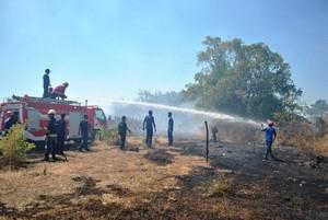 kebakaran lahan di pertamina badas