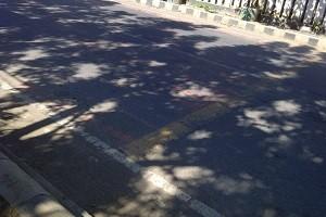 Marka jalan di depan SDN 1 Taliwang