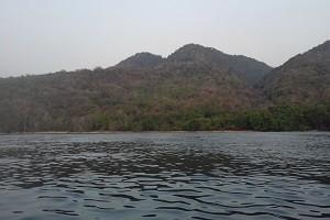 hutan konservasi pulau moyo