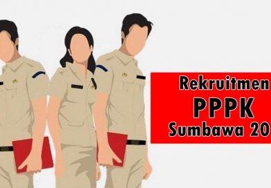 Sumbawa Tunggu Instruksi Pemprov Rekrut PPPK