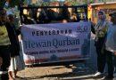 Amman Mineral dan Yayasan Muslim Batu Hijau Serahkan Hewan Kurban ke Beberapa Takmir Masjid di Sumbawa dan Lombok