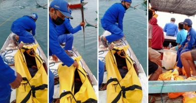 Korban Terseret Arus di Perairan Alas, Ditemukan